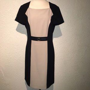Tahari Arthur S. Levine Two-toned Dress